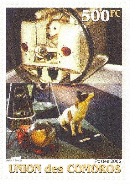 Famous russian space dogs belka and strelka on sts